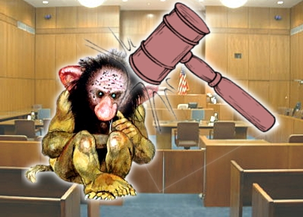 Parasitic patent trolls slapped down in separate US court rulings