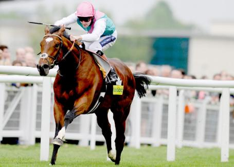 Frankel is officially the best horse in the world