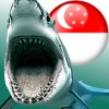 Singapore fines IRs again; would a great white deter you from getting a blowjob?