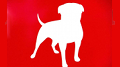 Zynga adds new CFO, revamps Zynga Poker, adds Farmville 2 slot