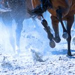 Court junks racetrack's trademark suit against gaming company