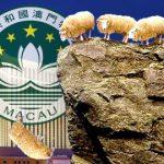 Macau junket operator herd continues to thin