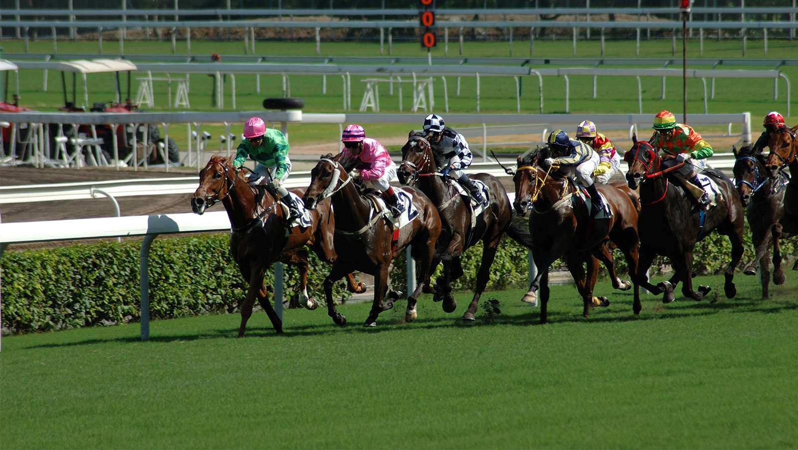 India's RummyCircle to launch site for horse race betting
