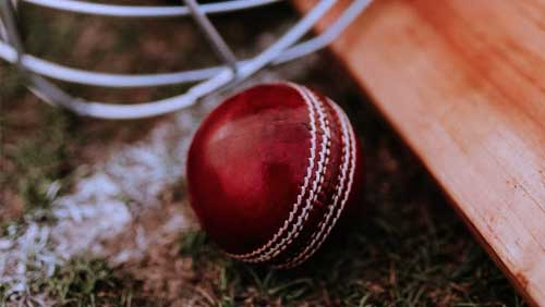 Dream11, two others granted official partners' rights for BCCI