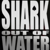Shark Out Of Water marks return of gambling movie