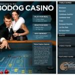 Pala Casino Launches New Social Casino App