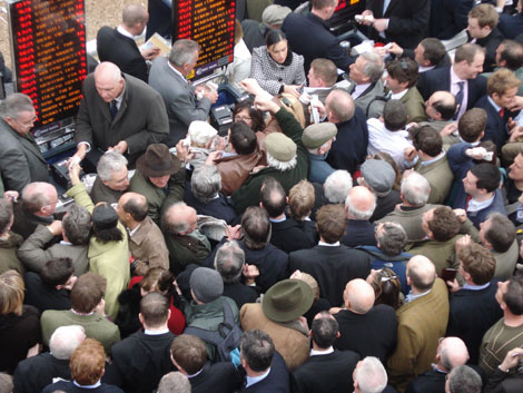 Bookmakers' tips for Cheltenham Festival