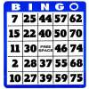 Save 200 bucks on Bingo Summit & Awards Registration!