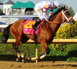 No Luck Needed For Preakness Champ Lookin At Lucky