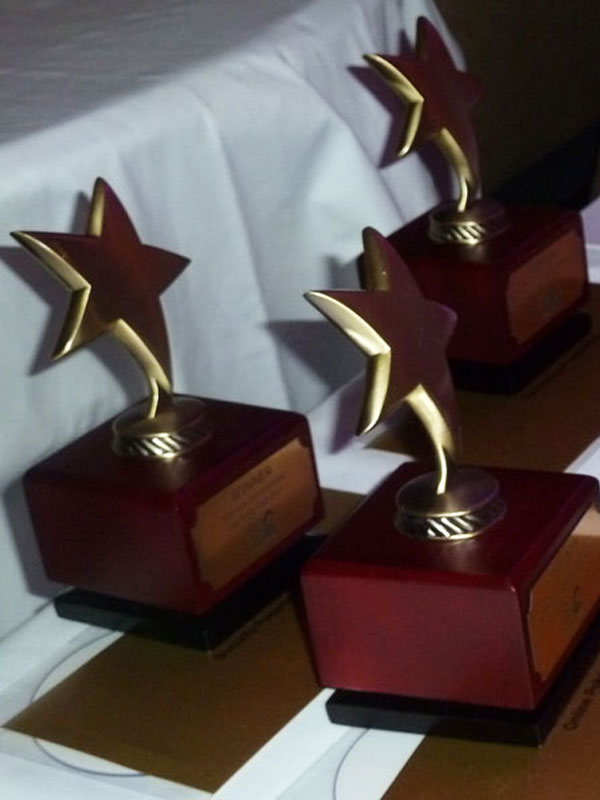 International Gaming Awards 2011 Trophies