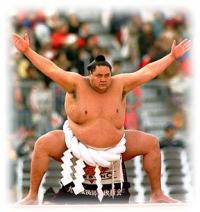 Betting and Online Sports News - Sumo