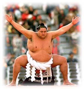 Sumo and match fixing go hand in hand