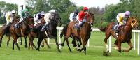 US horserace wagering has declined