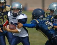 Pee-Wee football games played by children