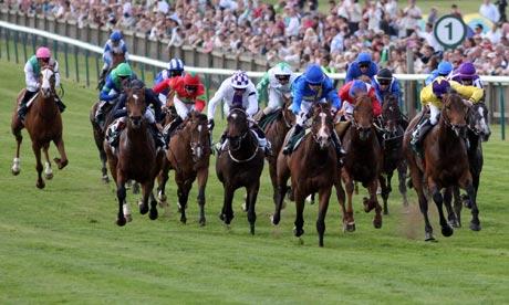news horse racing