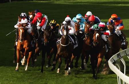 Horseracing has differing fortunes across Europe