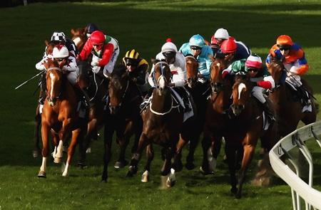 bwin horse racing