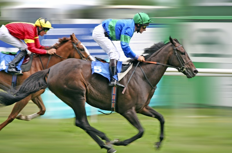 Horse racing to see cut to fixture list