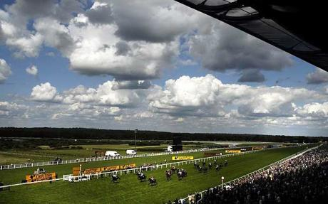 BHA delays fixture list and appoints new chief executive