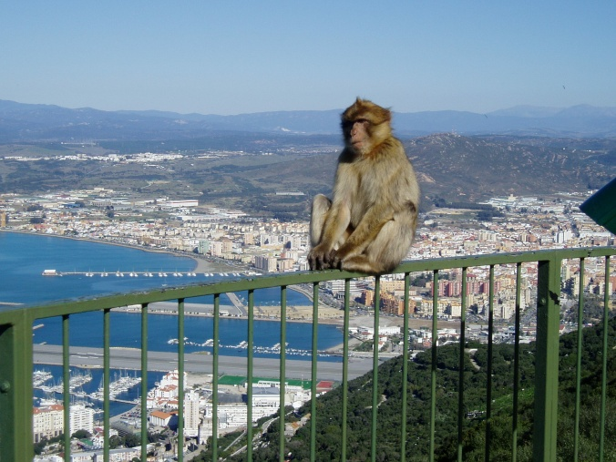 Gibraltar chief minister heads to UK; Hungary taxing from 2012