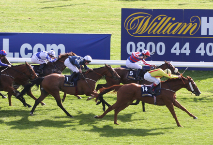 William Hill Ayr Gold Cup