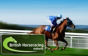 BHA insists new whip rules are still the subject of constant monitoring
