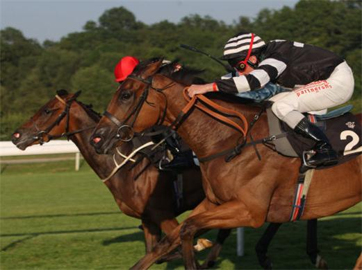 Horseracing levy