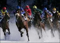 horse racing decline