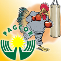Topless girls found in Bangkok; PAGCOR to broadcast cockfights?