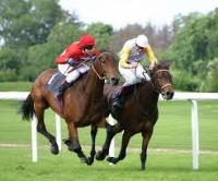 Horse Racing Georgia