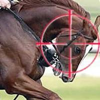 kentucky-derby-racing-problems