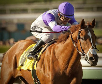 I'll Have Another 'wins another' with Preakness victory