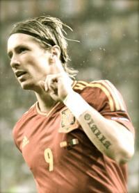 Fernando Torres Spain Euro 2012