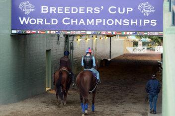 Breeders Cup track worries European bookies