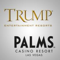 palms gets fined trump new ceo