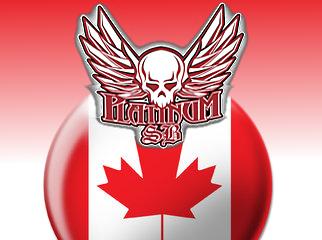 canada-platinumsb-sportsbook-arrests