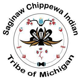 The Saginawa Chippewa Tribe Looking to Move Online