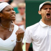 Djokovic, Williams favorites to win Wimbledon 2013