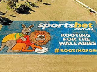 sportsbet-melbourne-wallaby-mural