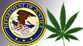 Mike Colbert radio resurgence; DOJ decides marijuana less harmful than sports bets