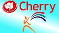 Shakeup at Malta gambling regulator; Cherry acquires Web Resorts