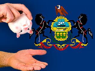 pennsylvania-casino-revenue-falls