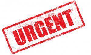 Urgent SEO Retraction and Amendment by Paul Reilly