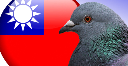 taiwan-pigeon-betting