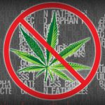 The Red Wire: Lies The Anti-Marijuana Lobby Told Me