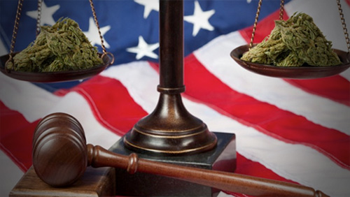 Red Wire: Marijuana Legalization Takes Different Paths In Colorado, Washington
