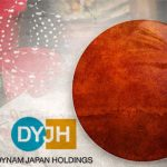 Dynam Holdings plans for small Japan casino, advised to wait for regulations