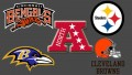 NFL AFC North Preview