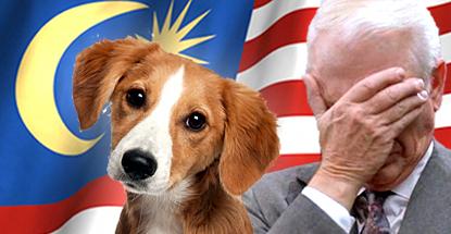 malaysia-gambling-dog-petting-tornadoes