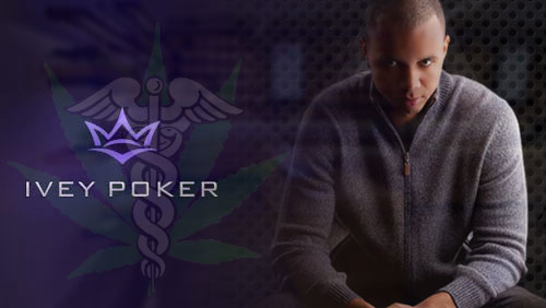 Ivey Poker Taking a Sabbatical Whilst Ivey Pursues Marijuana License